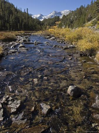 Rocky Creek in Little Lakes Valley, California