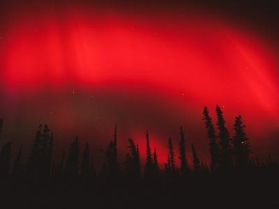 Red Aurora Borealis, Alaska
