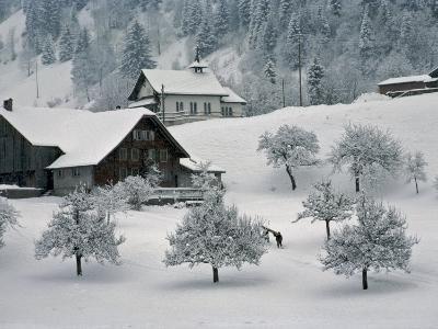 Switzerland, Winter Snow Scene in Alps near Appenzell