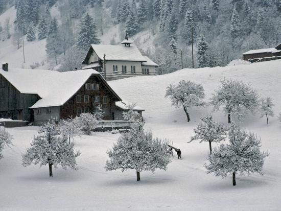 Switzerland Winter Snow Scene In Alps Near Appenzell