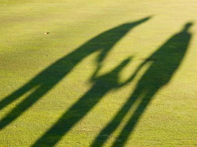 Tall Shadows Loom on the Greens of a Golf Course