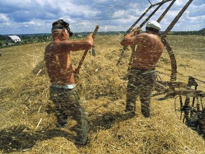 Two Ukrainian Men Rake Straw Onto a Lift after the Wheat Harvest