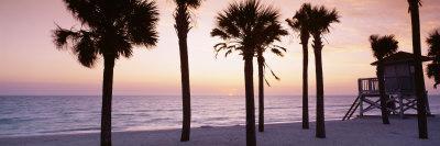 Palm Trees and a Lifeguard Hut on Lido Beach, Gulf of Mexico, St Armands Key, Florida, USA