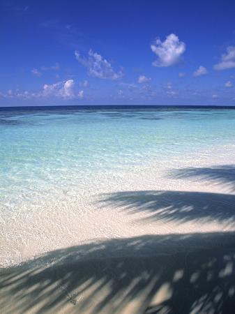 Tropical Beach at Maldives, Indian Ocean