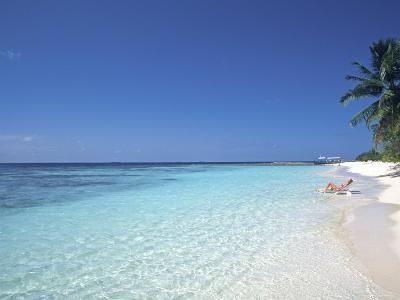 Tropical Beach at Maldives, Indian Ocean