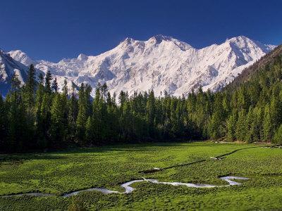 Nanga Parbat, from Fairy Meadows, Diamir District, Pakistan