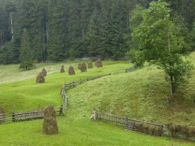 Haystacks, Bucovina, Romania
