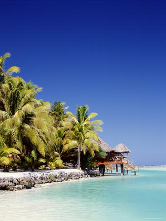 Palm Trees and Tropical Beach, Aitutaki Island, Cook Islands, Polynesia