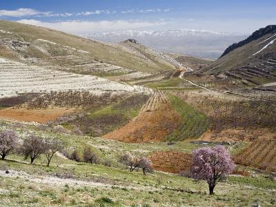 Niha, Bekaa Valley, Lebanon