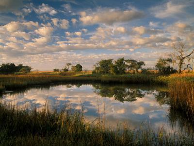 Chimney Creek Reflections, Tybee Island, Savannah, Georgia