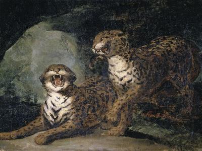 Deux Leopards