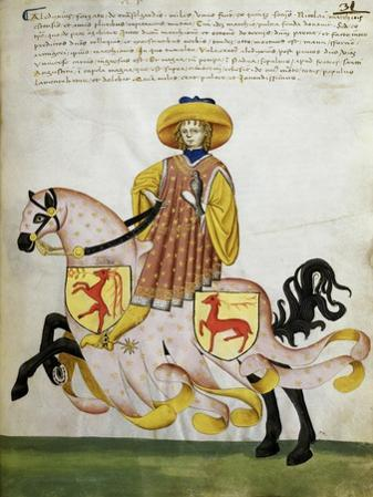Gold Knight and Pink Horse: Capodilista Codex