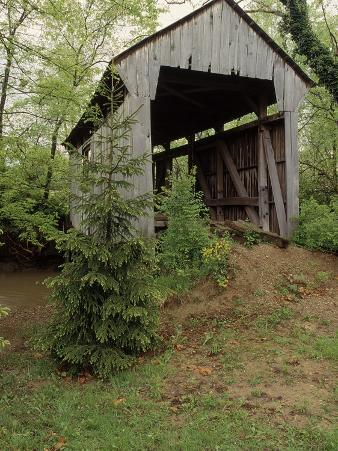 Brannon, Wessner Covered Bridge, OH