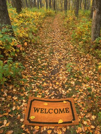 Welcome Mat on Forest Trail