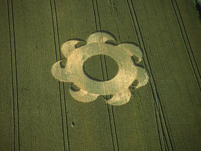 Crop Circle, Danebury, Hampshire, England