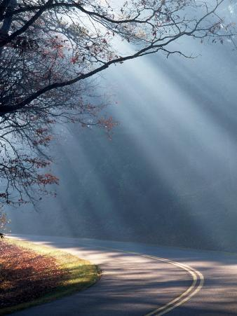 Road on a Misty Morning, Blue Ridge Parkway, NC