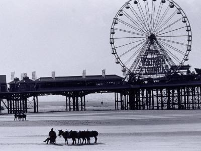 Pier and Donkey Rides, Blackpool, England