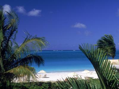Tropical Beach, Turks and Caicos Islands