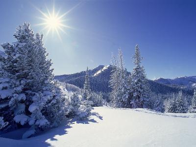Sunlight on Fresh Snow, Wasatch Mt. Range, UT