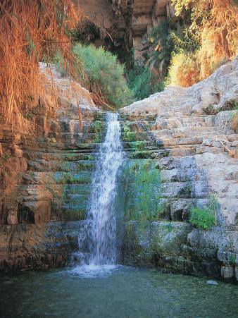 Shulamit Fall at En Gedi Reserve, Israel