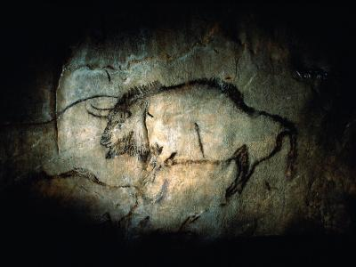 View of a Bison Painted at Lascaux Approximately 17,000 Years Ago