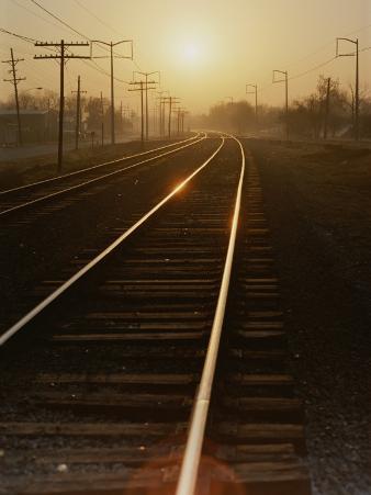 Morning Sun Shines on Railroad Tracks