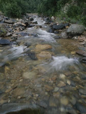 Eureka Creek Rushes over a Rock-Strewn Bed