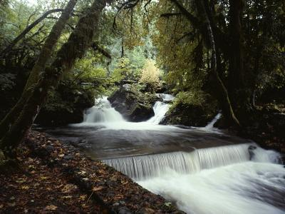 Water Flows over a Man-Made Waterfall Near Lake Quinault