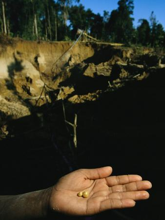 Two Small Pellets of Gold in a Hand with a Mining Hole Backdrop