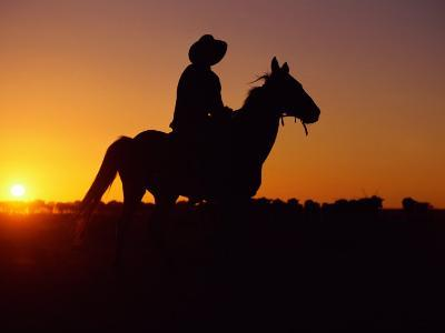 A Cowboy and His Horse Ride off in to the Sunset