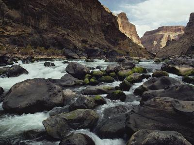 Colorado River Flows over a Rocky Streambed
