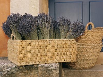 Basket Full of Herbs