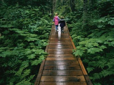 Two Children Walk Along a Wooden Walkway in the Rain