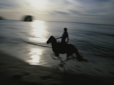 Horseback Rider Silhouetted on Beach, Costa Rica