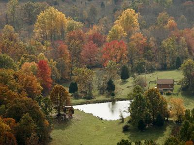 Fall Color Graces a Farm in the Shenandoah Valley
