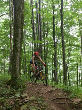 A Woman Rides a Mountain Bike on Props Run, a Single Track Trail