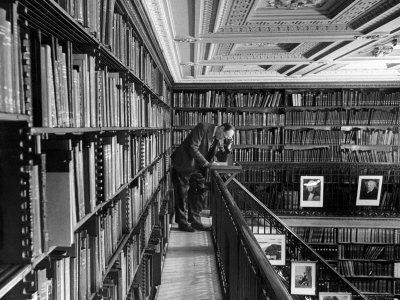 Man Reading Book Among Shelves on Balcony in New York Public Library