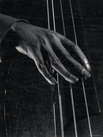 Hand of Bass Player on the Strings During Jam Session at Photographer Gjon Mili's Studio