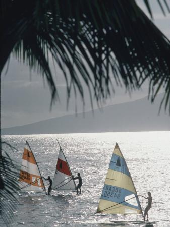 Wind Surfers at Waihikula, Maui