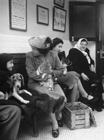 Women and Children Holding Pets While Waiting to See Veterinarian