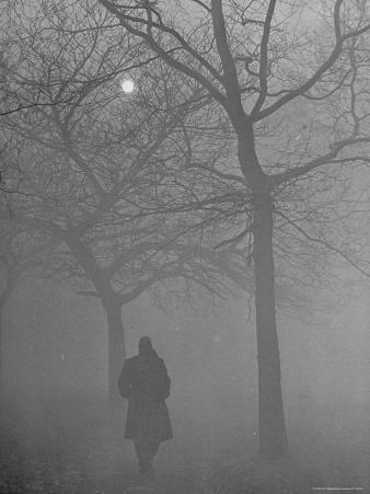Man Walking Through Hyde Park in the Fog