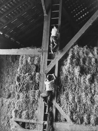 Two Boys Playing in a Barn