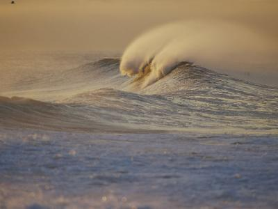 Sunlight Reflects off Surf at Sunrise