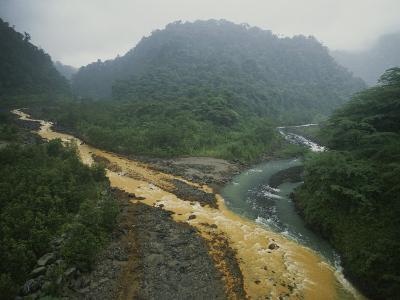 Soil Erosion in a Rain Forest, Costa Rica