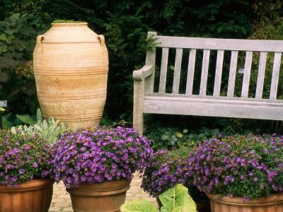 Potted Plants and a Garden Bench in the Chicago Botanic Garden