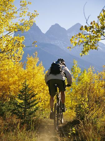 Cyclist Biking Through Trees with Autumn Foliage