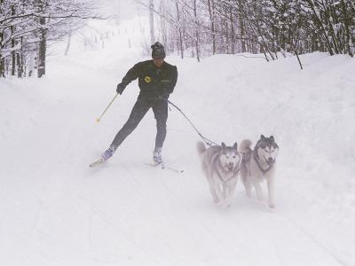 Ski Touring in Maine