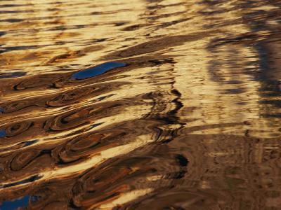 Reflections Glisten in Flowing Water