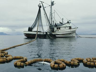 A Fishing Boat with a Large Net in the Water