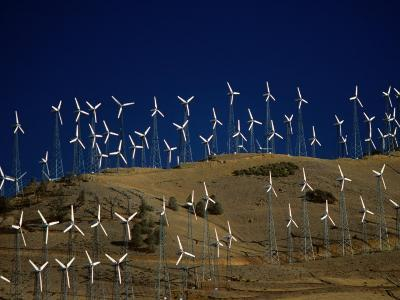 Rows of Wind Turbines on Hill, USA